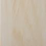 береза-золотая